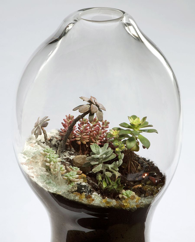 Giant-and-Living-Terrariums-by-Paula-Hayes-1
