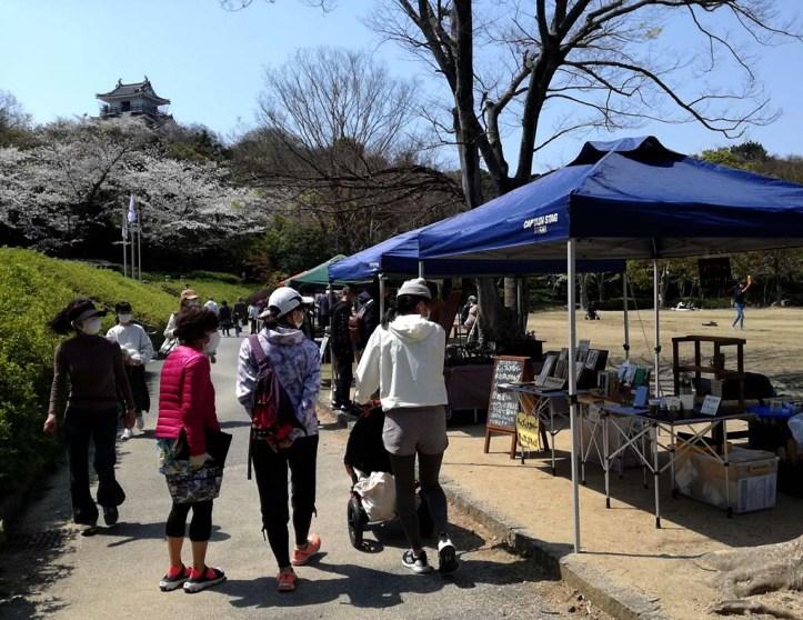 天気は快晴、お城と桜がベストマッチ