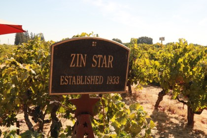 old vine zin at Lucas Winery