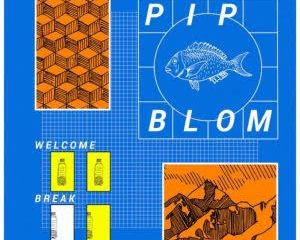 Pip Blom - It Should Have Been Fun Mp3 Download