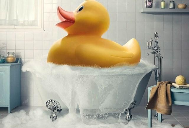 POETRY: Yellow Ducks