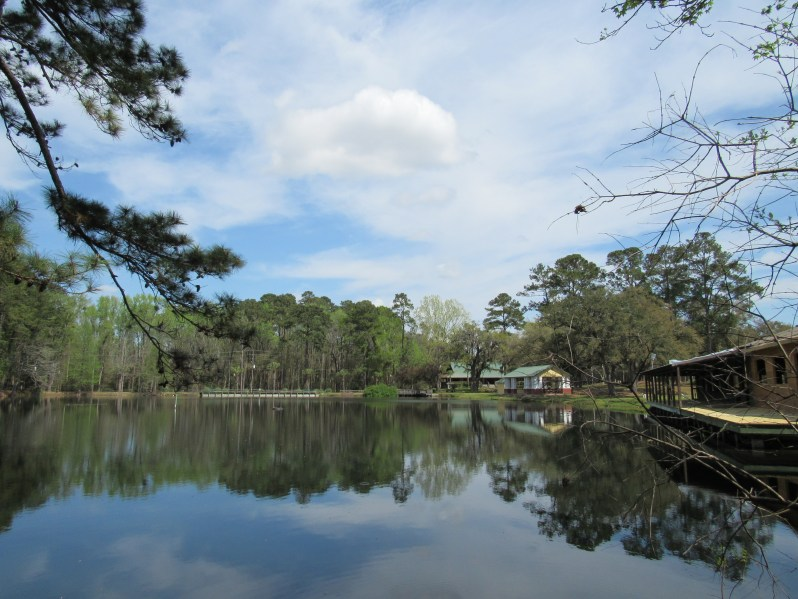 3 acre pond