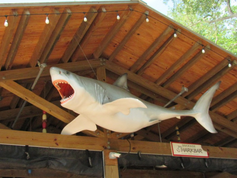 Dockside Shark bar