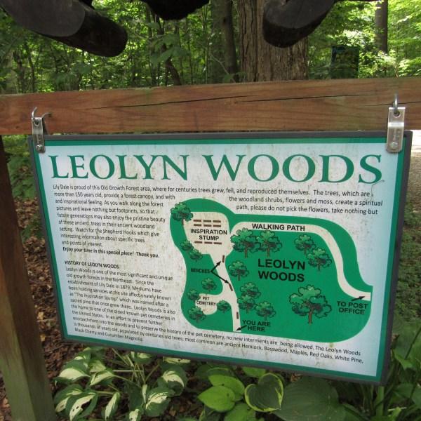Leolyn Woods