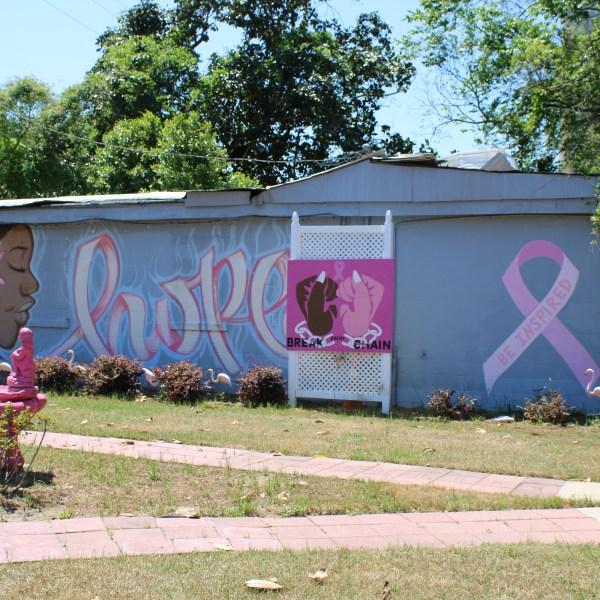 Allendale Pink Garden of Hope