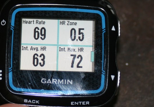 Garmin HRM-TRI (HRM-SWIM) Review