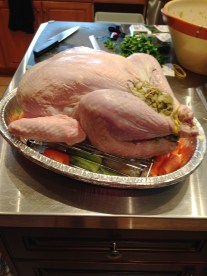 Stuffed and Trussed Turkey ready for Oven