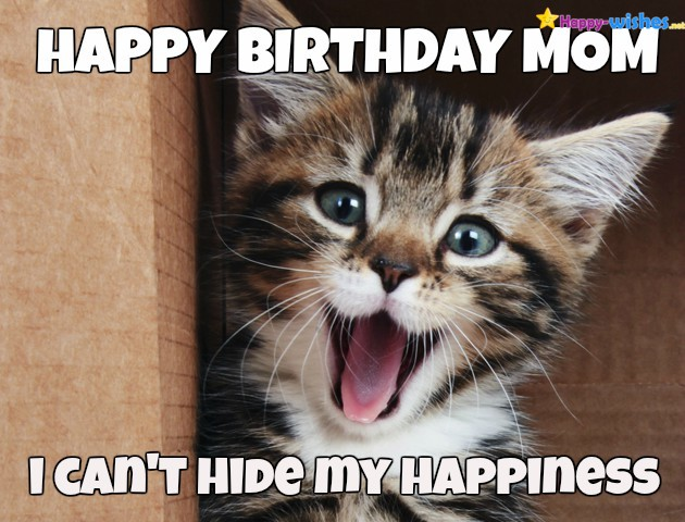 18 Birthday Memes Mom Funny Factory Memes