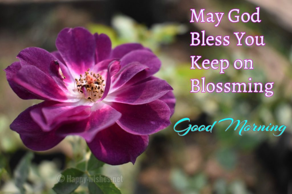 Good Prayers And Blessings Sunday Morning