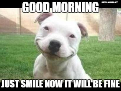 Funny Good Morning Meme For Friends