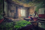 a_bed_of_moss_ii_by_illpadrino-d5ol69y