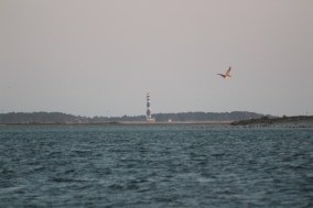 Lighthouse 5 (2)