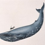 Mobile game whales are out there, you just have to know how to find them…