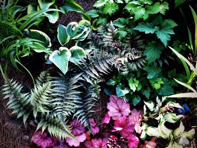 Gardening For The Soul :: The Garden That Love Built
