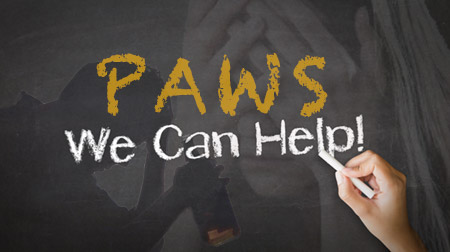 Post Acute Withdrawal (PAWS) Training and Certification