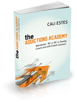 The Addictions Academy - Workbook