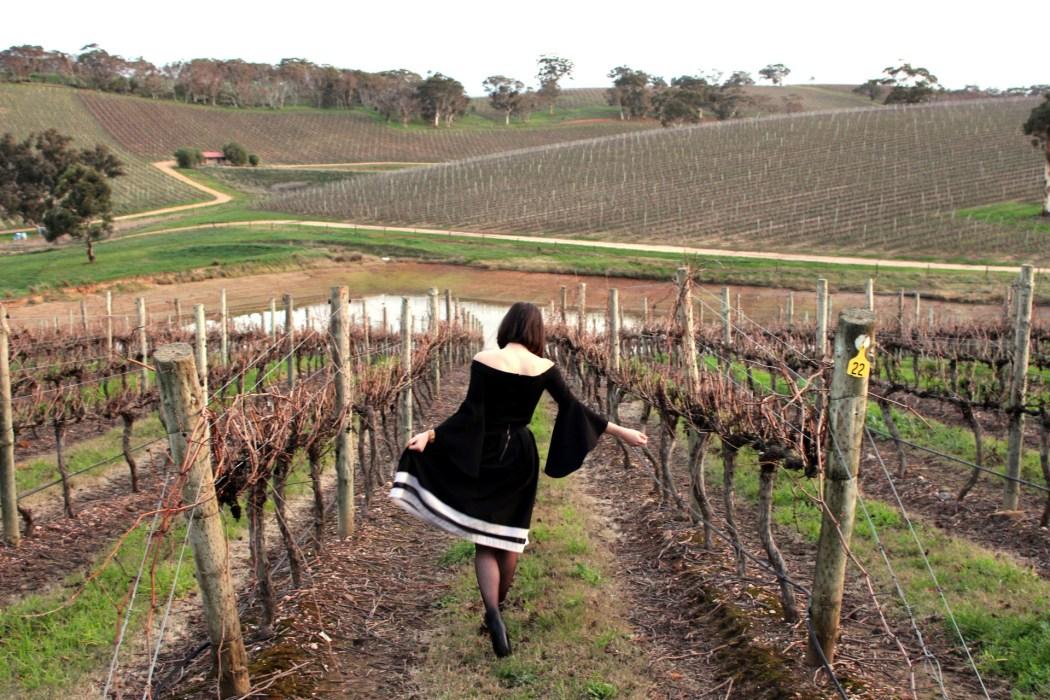 The picturesque longview vineyards