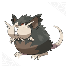 Alola Raticate. Image from Pokemon Sun and Pokemon Moon website.