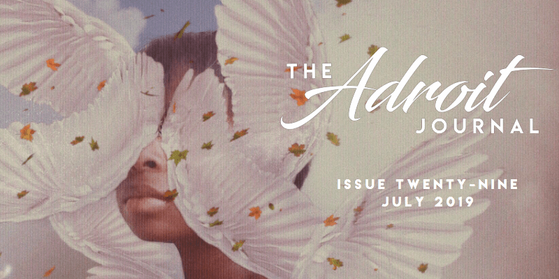 Home - The Adroit Journal