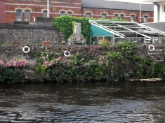 Cork Ireland river flowers