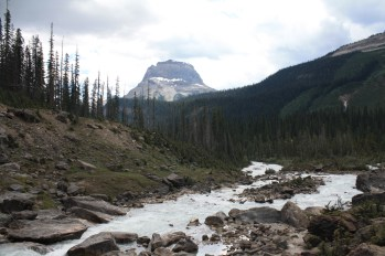 Canadian Rockies and Glacier National Park 254