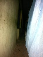 the hallway that my bunk bed was