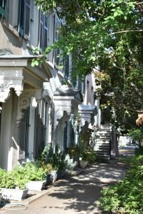 Walking in Savannah 1