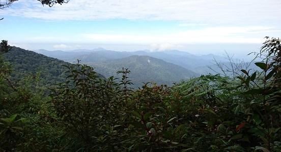 Cameron Highlands – The Tea Mountains