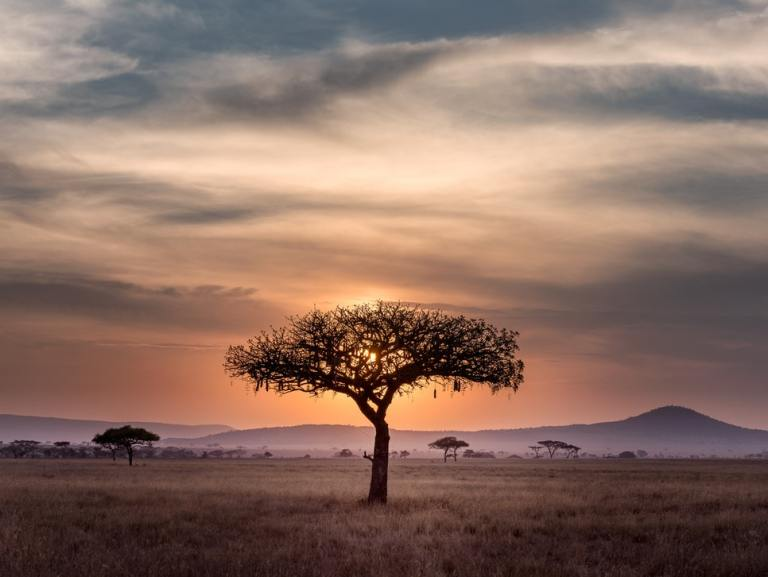 The top 13 safest African countries to visit