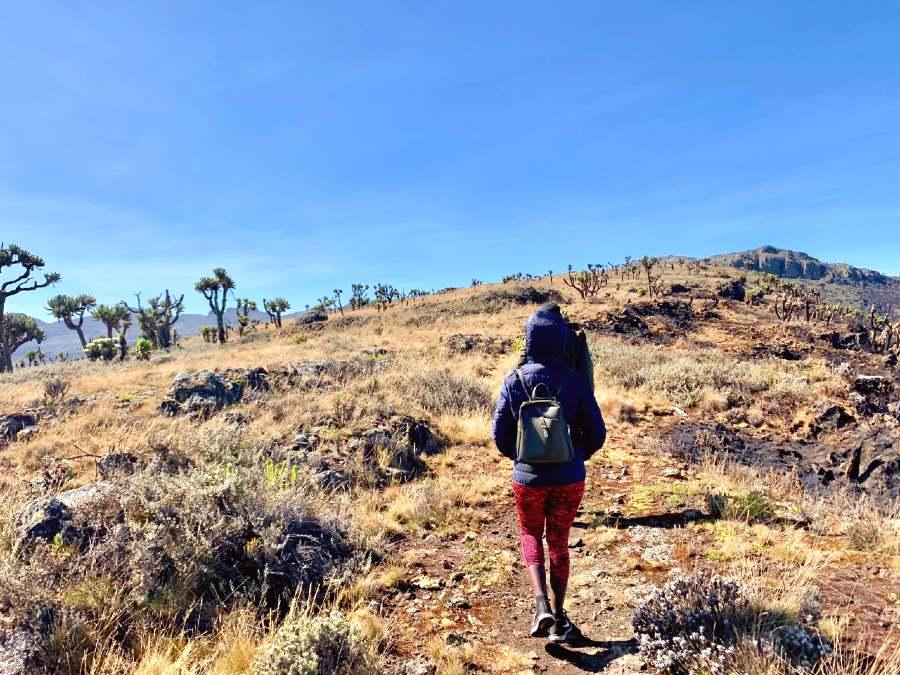 best time to climb Mt. Egon