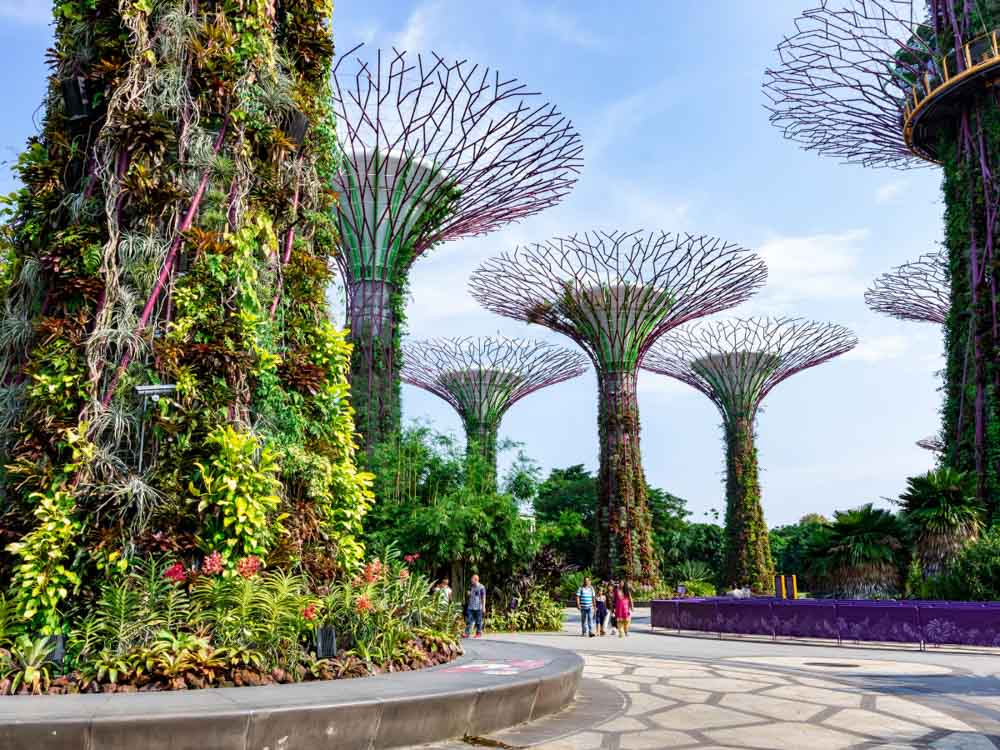 Gardens by the Bay in  Singapore is one of the landmarks of Asia