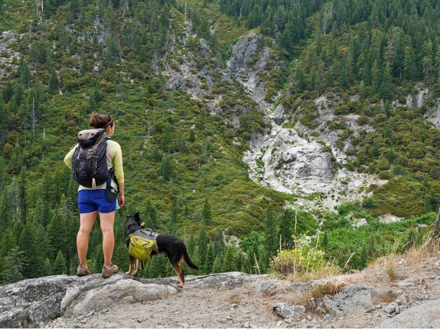 doing dog friendly activities is one of the best tips for camping with a dog
