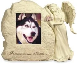 pet cremation urns dog ashes