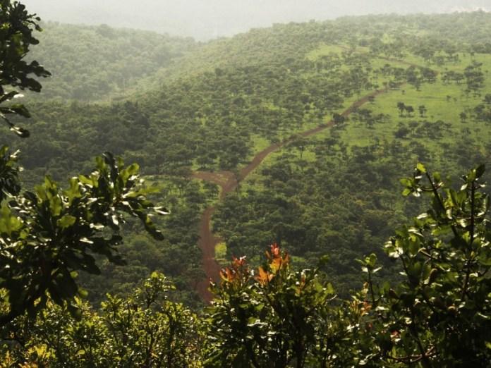 Parcel of Simandou