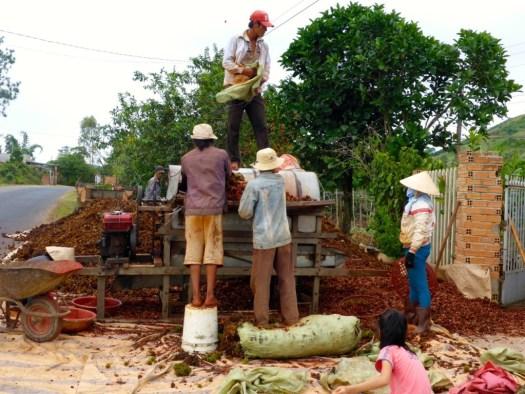 Curry - Dalat, Vietnam