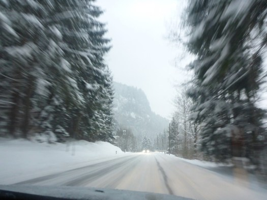 Snow Driving - Germany