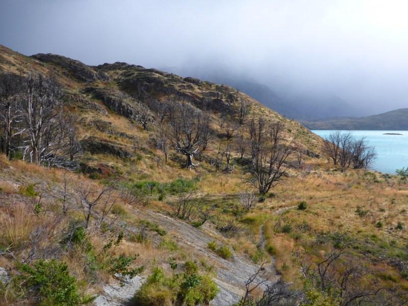 Torres del Paine, Patagonia, Chilie