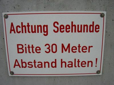 Das erste Schild der Gemeinde Helgoland, das den Seehunden das Anschwimmen des Strandes verbietet.
