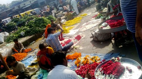 From Jamalpur flower are sold to retailers situated in Ahmedabad areas like Navrangpura , CG road, Satellite etc .