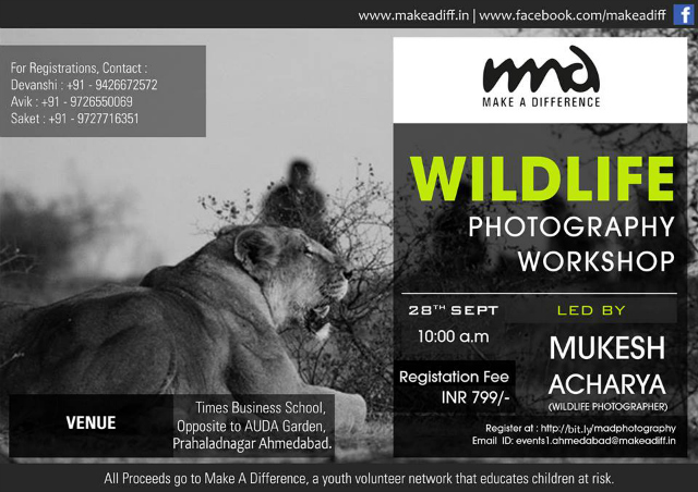 MAD: Wildlife photography in Ahmedabad