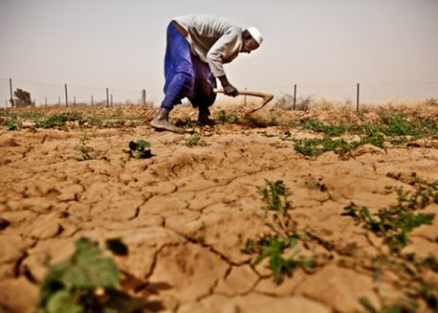 Persistent challenges and emerging threats to food security (image from afhdr.org).