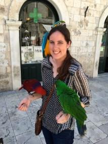 Parrots :-)