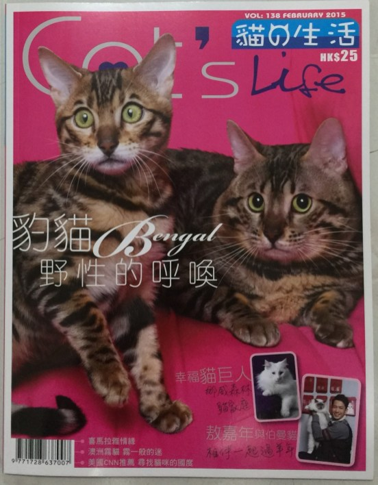 Cat's Life Cover