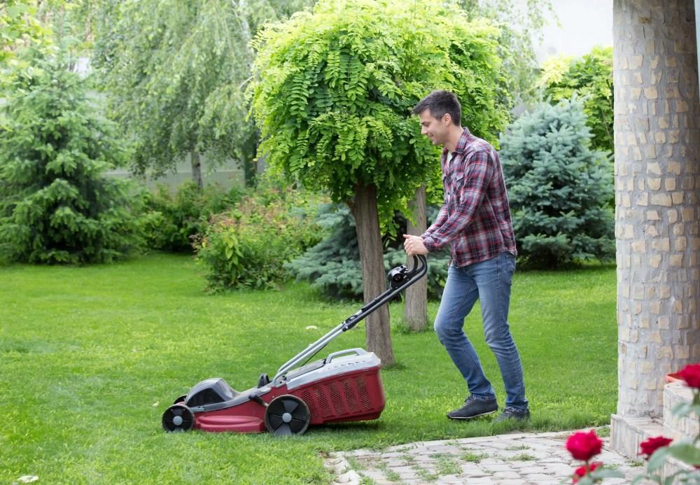 cutting grass in backyard with electric lawnmower