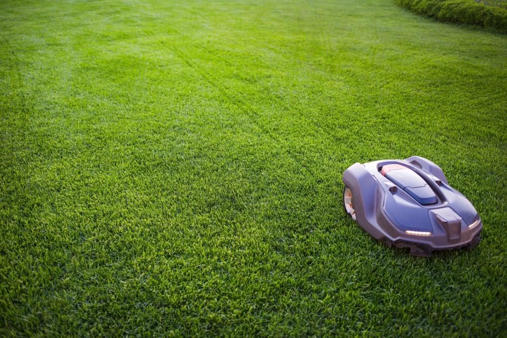 robot lawn mower cutting grass in backyard