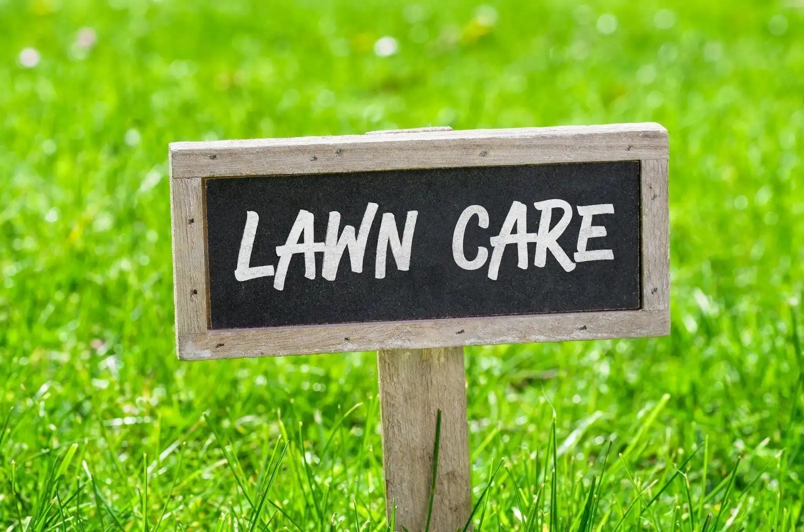 lawn care sign in grass