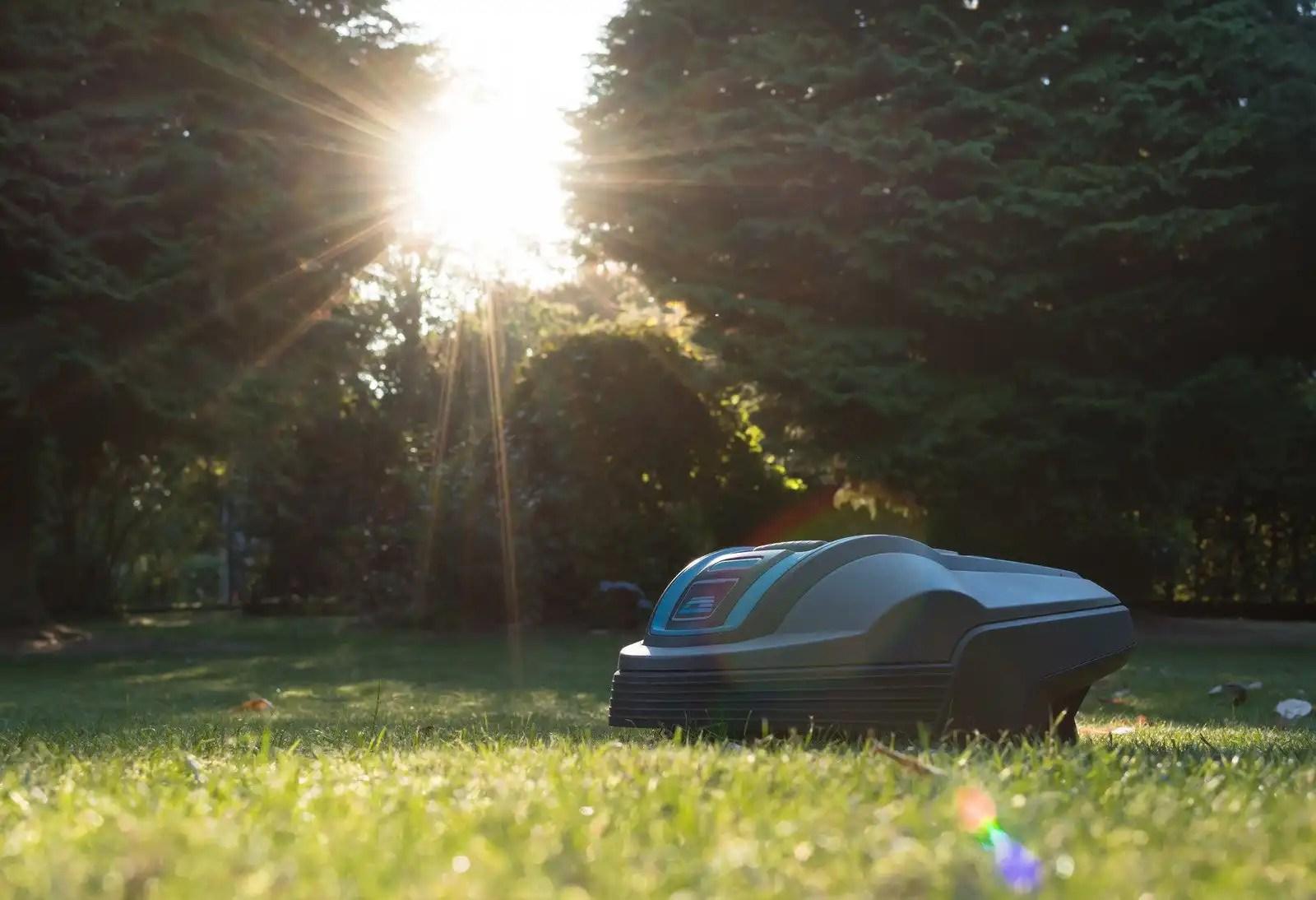 robot lawn mower cutting grass in back yard