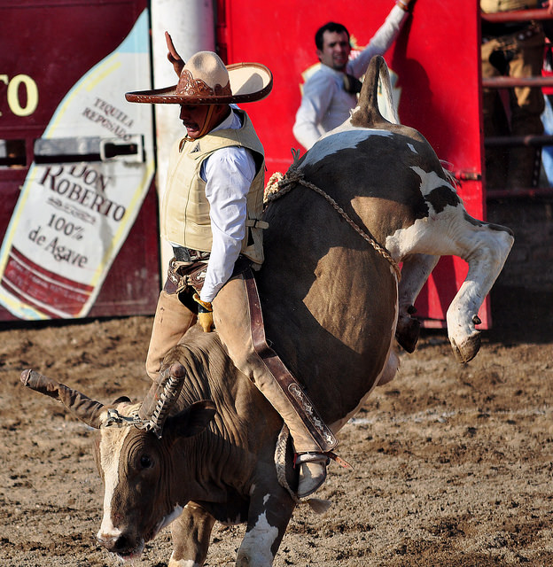 Helping your donors to stay engaged in your mission is a lot like bullriding.