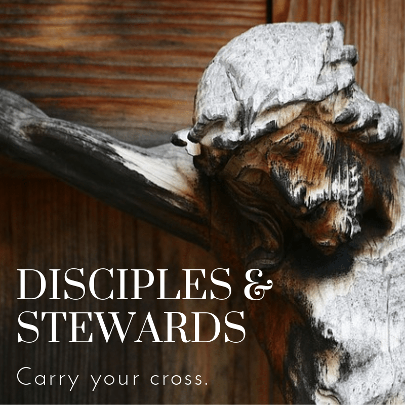 Disciples & Stewards – Ask His Church