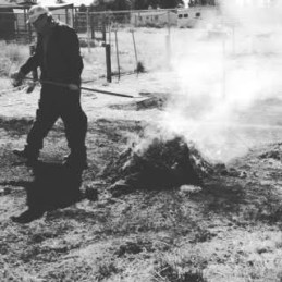 Burning weeds with Dad
